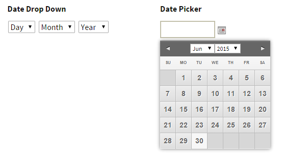Gravity Forms: How to Restrict a DatePicker Date Range